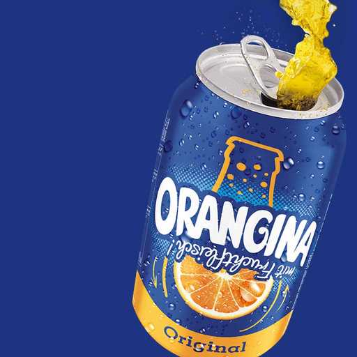 Orangina Corporate and Commercial Website